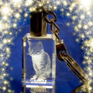 laser cat keepsake