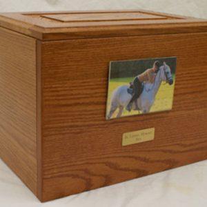 horse-urn-plain-1