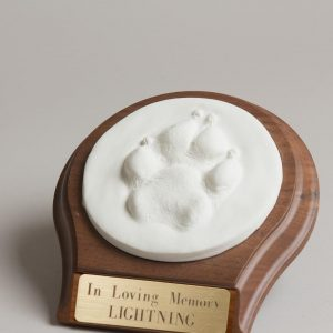 3D Clay Paw Print