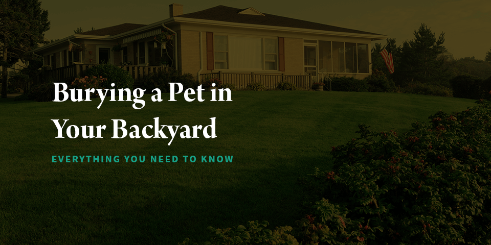 Burying a Pet in Your Backyard: Everything You Need to Know